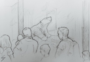 Quick Sketch. 'Prague Zoo.' Crowds admiring a polar bear. This zoo was opened in 1931, and is considered amongst the top ten zoos in the world. @davidasutton @sketchbookexplorer Facebook.com/davidanthonysutton #drawing #sketch #prague #travel #travelblog #praguezoo