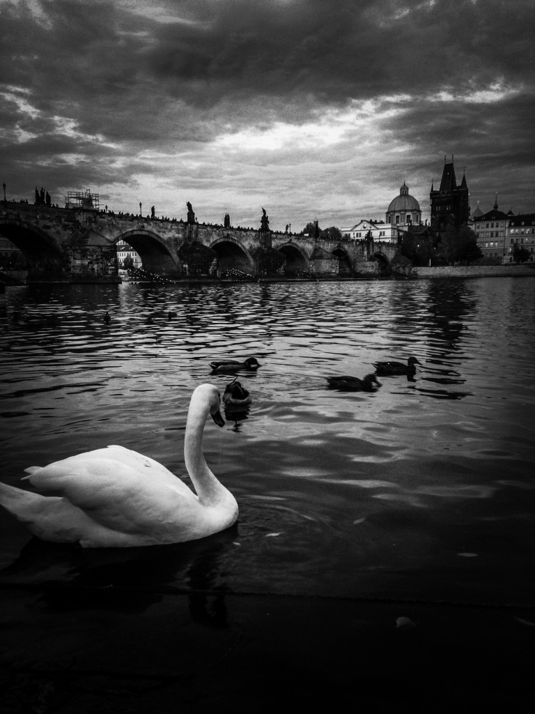 Photograph. 'Charles Bridge, Prague.' This 15th century bridge, originally named 'Prague Bridge' and 'Stone Bridge', crosses the Vltava river, connecting Prague Castle and the Old Town. It has been home to 30 statues since the 1700s, but, unbeknownst to most tourist who cross it, all the statues have now been replaced by replicas. @davidasutton @sketchbookexplorer Facebook.com/davidanthonysutton #b&w #photography #prague #travel #travelblog #charlesbridgeprague
