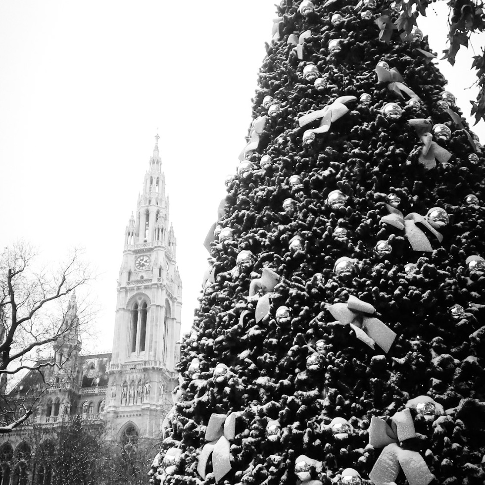 Urban photo - Vienna, Austria. 'Viennese Dream Christmas Market.' You will find this winter wonderland in front of the City Hall. Come for the Christmas market stalls, the amazing decorations, or the ice ring. It is open this year from 17th November to the 26th December. sketchbookexplorer.com @davidasutton @sketchbookexplorer Facebook.com/davidanthonysutton #photograph #b&w #vienna #travel #travelblog #viennachristmas