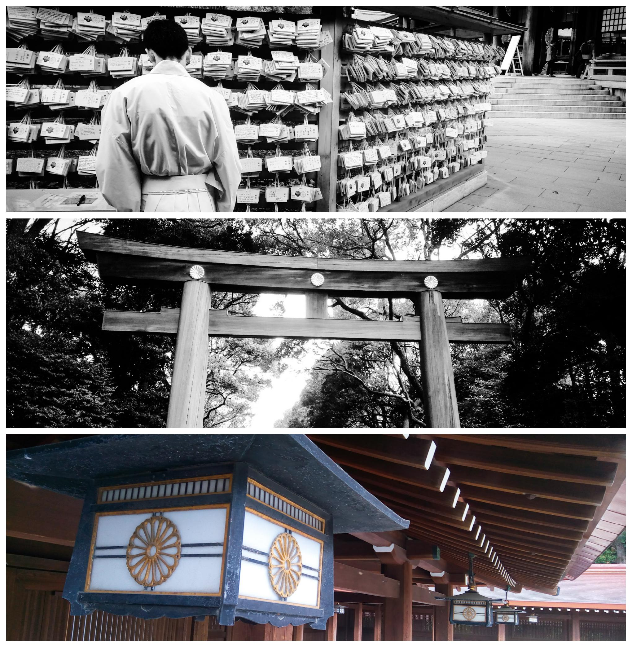 Urban Photos - Shibuya, Tokyo, Japan. 'Meiji Shrine,2.' The shrine is surrounded by a forest, with over 100,000 trees. sketchbookexplorer.com @davidasutton @sketchbookexplorer Facebook.com/davidanthonysutton #japan #tokyo #taito #meijishrine #travel #travelblog #photography #cheeryblossom #cherryblossomseason