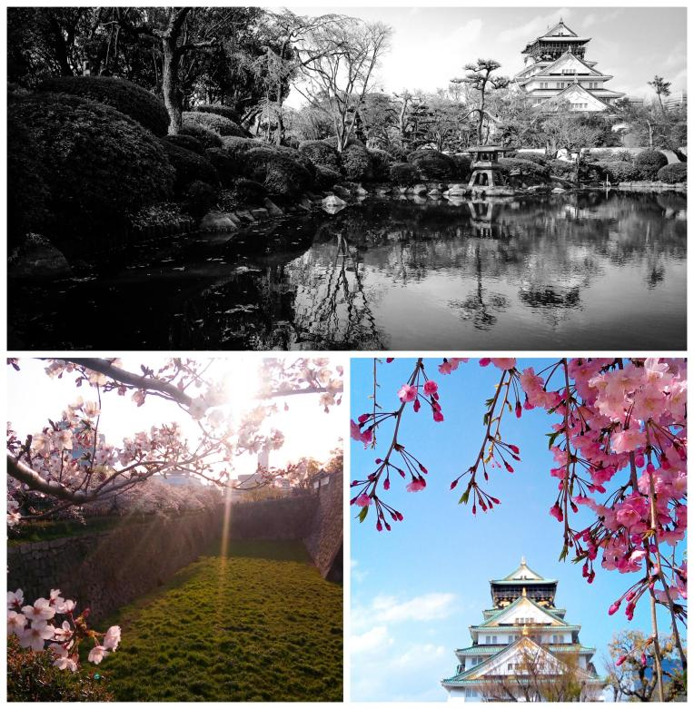 Urban photos - Chuo Ward, Osaka, Japan.'Osaka Castle.' Built in 1583, Osaka Castle is one of Japan's most famous castles, and has been at the heart of many of Japan's key historical events. With this in mind, and knowing how often fire has repeatedly ravaged so many of Japan's historical buildings, it is no surprise the castle has been destroyed and rebuilt many times over its life. The latest reconstruction, this time in concrete, was only completed in 1997, and it is now home to a museum. The castle was founded by Toyotomi Hideyoshi (a peasant who would go on to unify Japan). Later, his wife and son were forced to commit ritual suicide, when the castle was successfully besieged and destroyed. sketchbookexplorer.com @davidasutton @sketchbookexplorer Facebook.com/davidanthonysutton #japan #osaka #chuoward #osakacastle #travel #travelblog #photography #cheeryblossom #cherryblossomseason