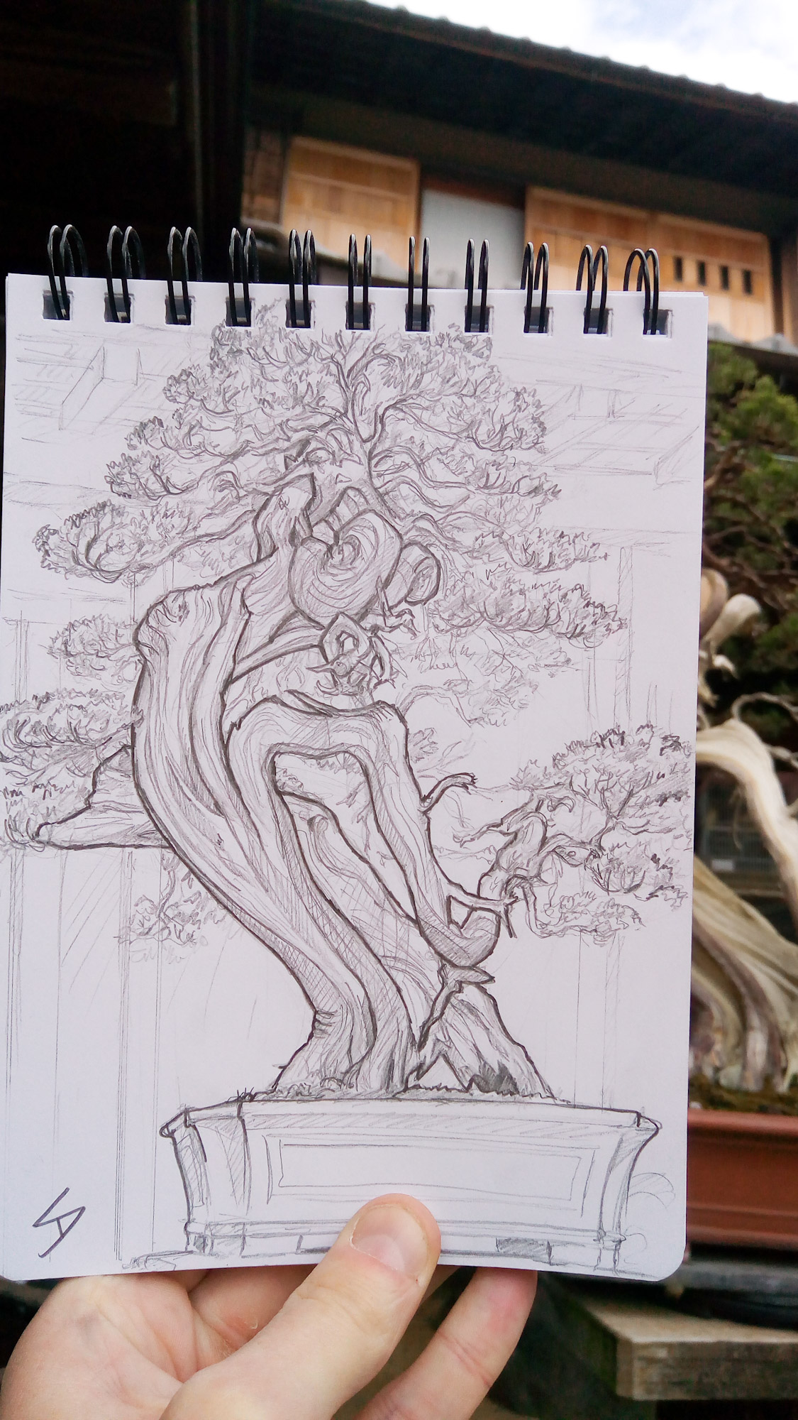 Urban photo art - Edogawa City, Tokyo, Japan. 'Shunka-en Bonsai Museum.' I was informed the Sargent Juniper tree I sketched was over 600 years old. Included in the entrance fee, is a cup of traditional Japanese tea - perfect accompaniment to a sunny sketch. sketchbookexplorer.com @davidasutton @sketchbookexplorer Facebook.com/davidanthonysutton #japan #tokyo #edogawa #shunkaenbonsaimuseum #travel #travelblog #art #sketching #cheeryblossom #cherryblossomseason #cherryblossomjapan
