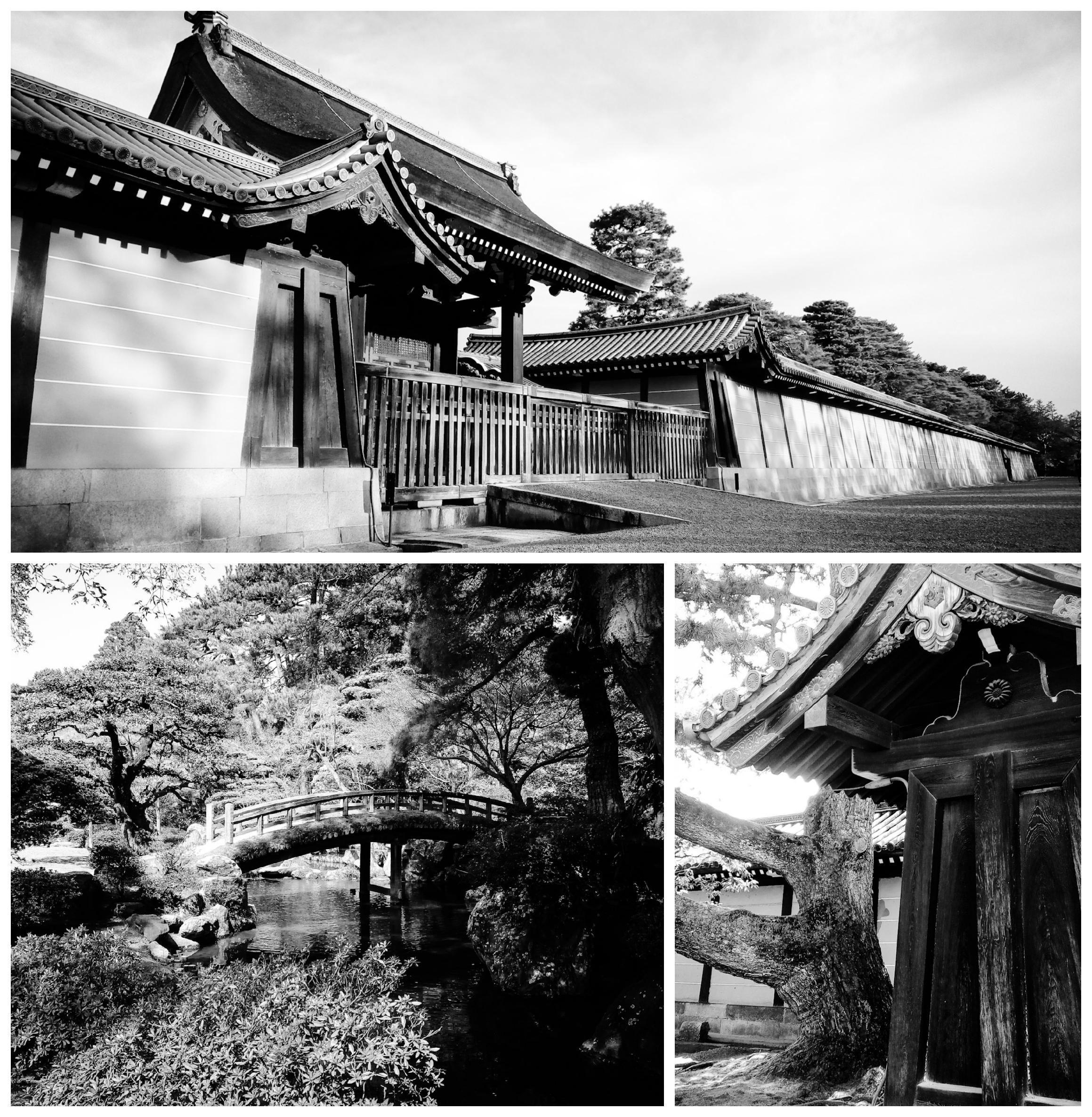 Urban Photos - Kamigyo Ward, Kyoto, Japan.'Kyoto Imperial Palace.' Officially the home of the Japanese Imperial Court, since the 12th century, and used as such even before then, Kyoto Imperial Palace was only sidelined in 1869, after the Meiji Restoration. Just like many of Japan's great historical buildings, the Palace has burnt down and been reconstructed many times in its history. This is an apparent issue when you primarily build in wood. Even though the last reconstruction was in 1855, it may have been the most accurate at capturing the original design of the first Imperial Palace, from the Heian Period. sketchbookexplorer.com @davidasutton @sketchbookexplorer Facebook.com/davidanthonysutton #japan #kyoto #kamigyoward #kyotoimperialpalace #travel #travelblog #photography #cheeryblossom #cherryblossomseason