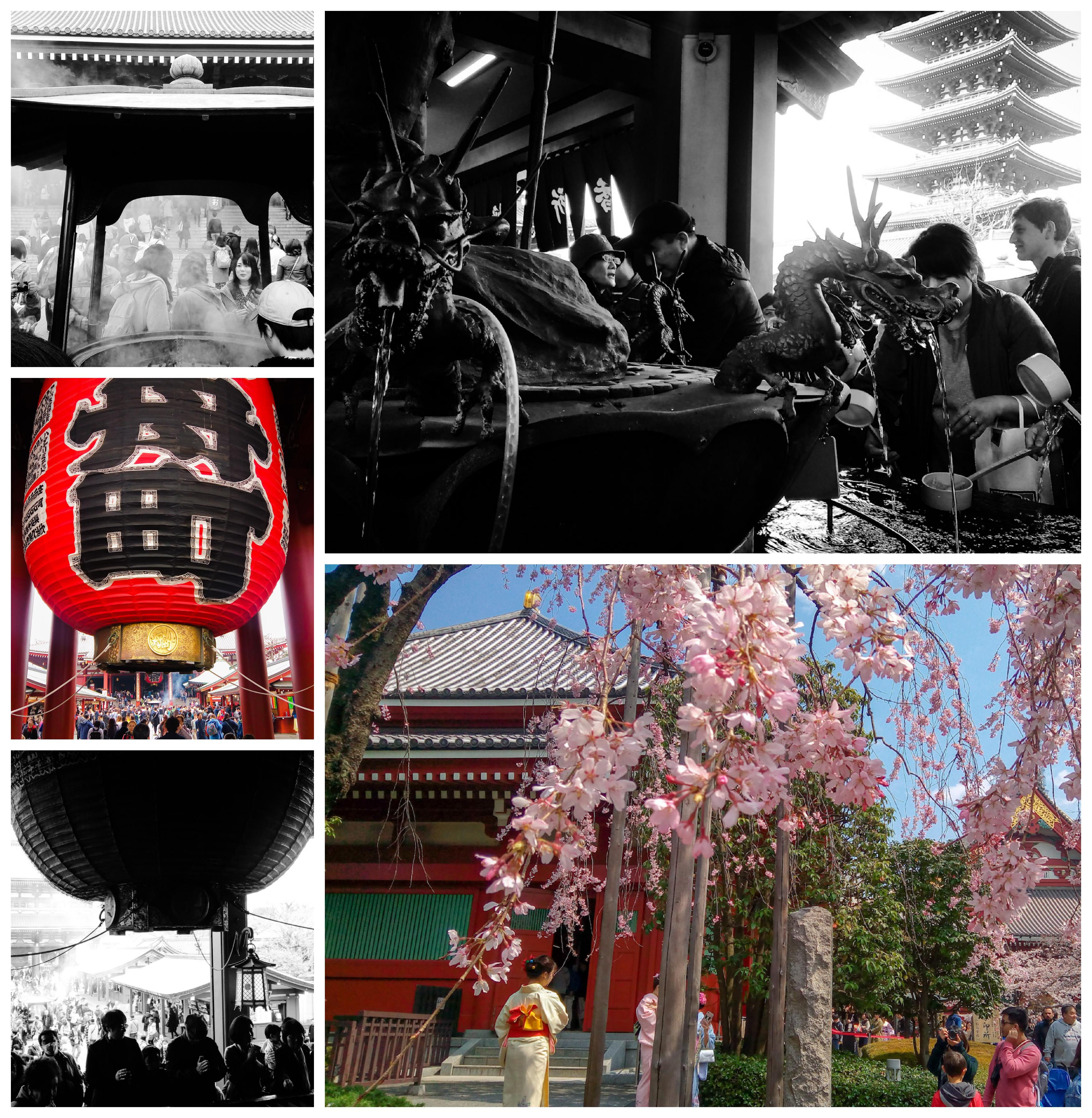 Urban Photos - Asakusa, Tokyo, Japan. 'Senso-ji Temple.' Tokyo's oldest temple (645), and the world's most visited spiritual location (over 30 million a year), can be found in Asakusa. Thought it was destroyed in WW2, the main shrine and five story pagoda have been immaculately reconstructed. Visitors enter through the famous Kaminarimon - Thunder Gate. During my time there, I noticed many locals dressed in traditional kimonos taking selfies under the cherry blossom. sketchbookexplorer.com @davidasutton @sketchbookexplorer Facebook.com/davidanthonysutton #japan #tokyo #asakusa #Sensojitemple #travel #travelblog #photography #cheeryblossom #cherryblossomseason #cherryblossomjapan