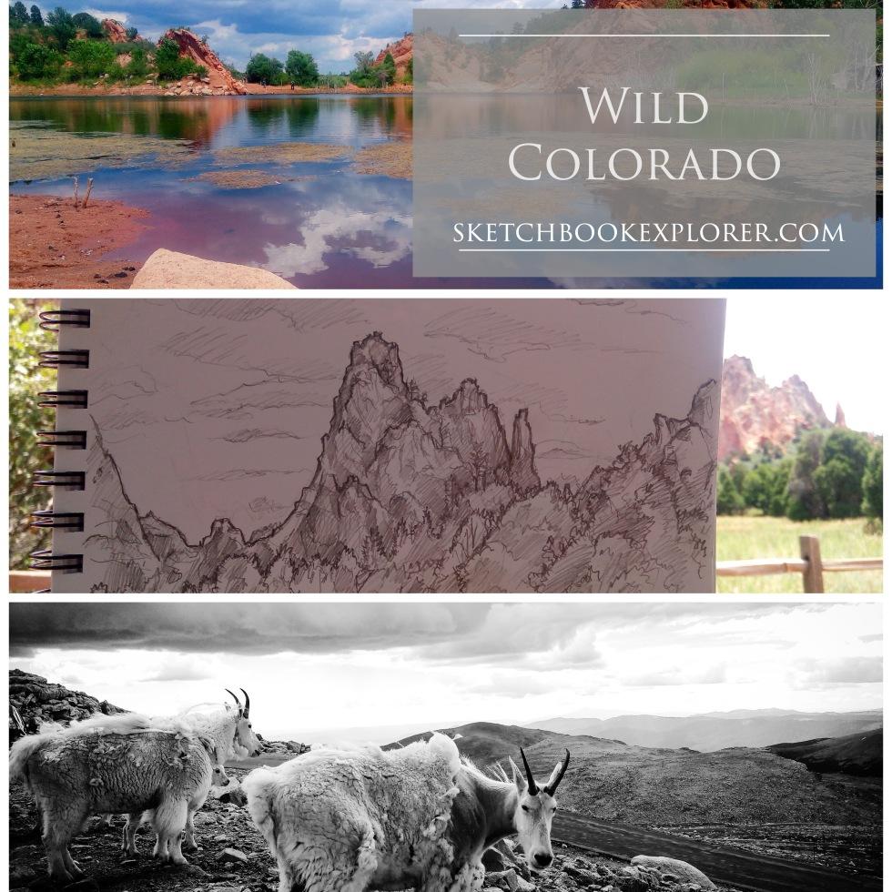 Wild Colorado